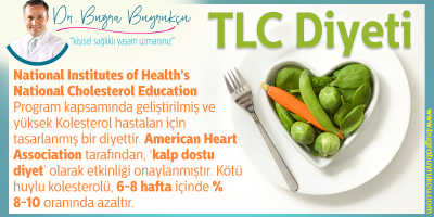 TLC Diyeti (Therapeutic Lifestyle Changes Diet)